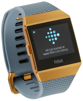 Fitbit Ionic Slate Blue/Burnt Orange - Fitness hodinky